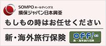 SONPOホールディングス損保ジャパン日本興亜